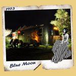 Belrepayre airstream a louer blue moon
