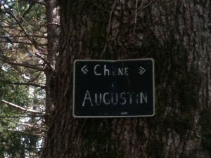 le chene augustin nearby the trailer park